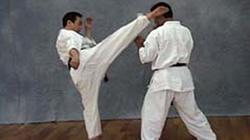 大石最高師範の上段回し蹴り
