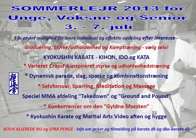 SOMMERLEJR 2013 for Unge, Voksne og Senior 3.-7. juli (Denmark)
