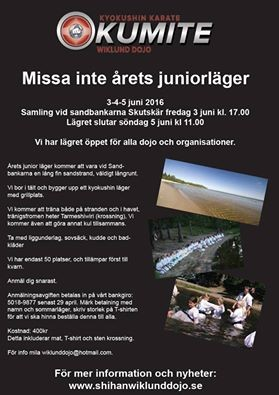 Sweden sokyokushin junior summercamp