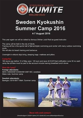 Sweden sokyokushin summercamp (August 4-7)